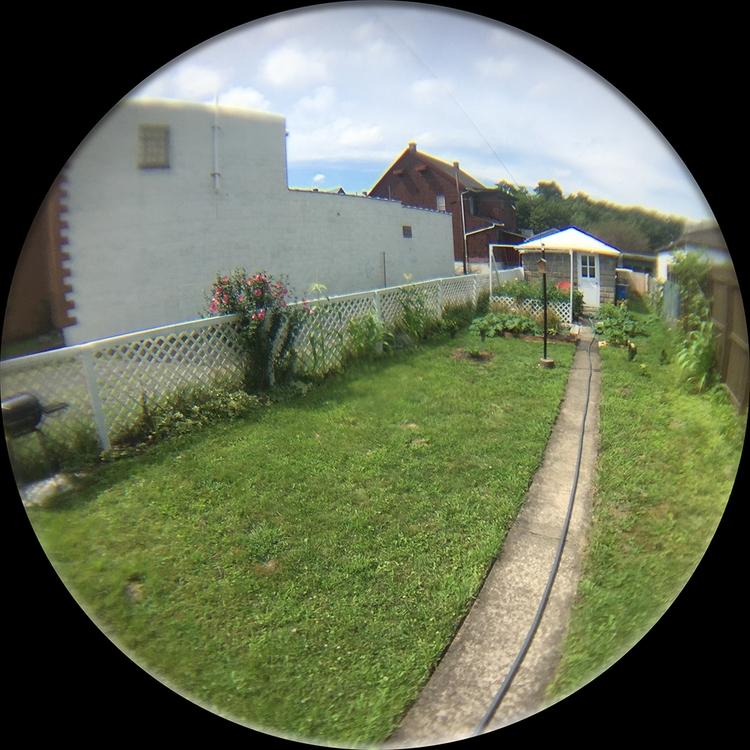 Messing fisheye lens iPhone - adverteria | ello