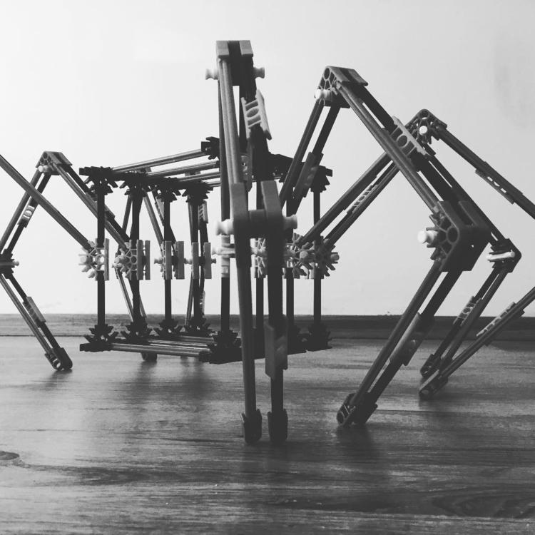 spider, robot, installation - dorian_gray | ello