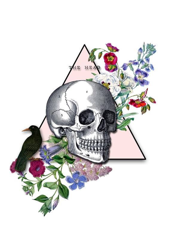 HEAD - collageart, skull, death - gloriasanchez | ello