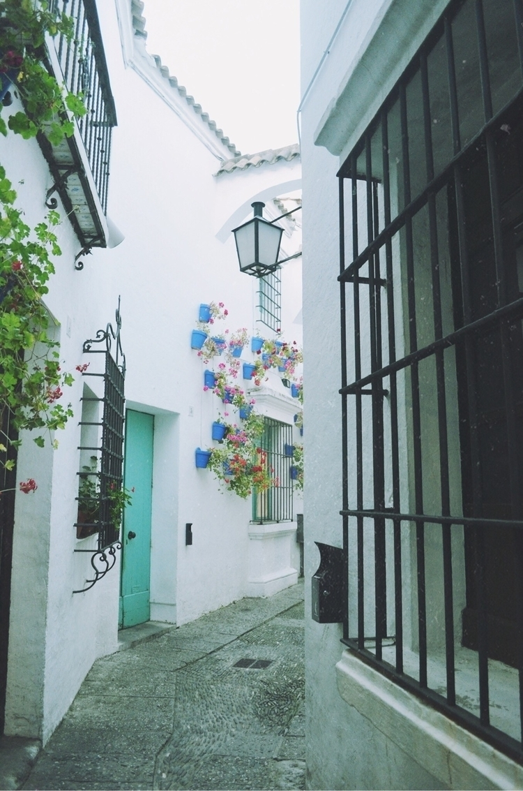 barcelona, barcelonaenfotos, spain - hayleyscomet | ello