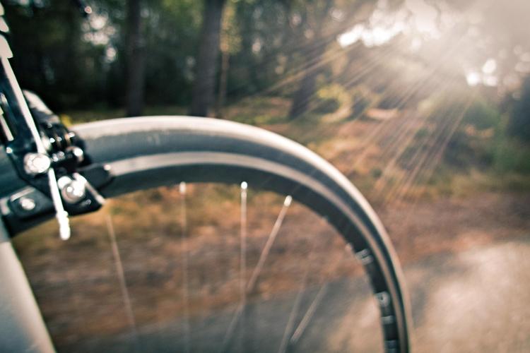 rays sunny weekend - Cycling - gekopaca | ello