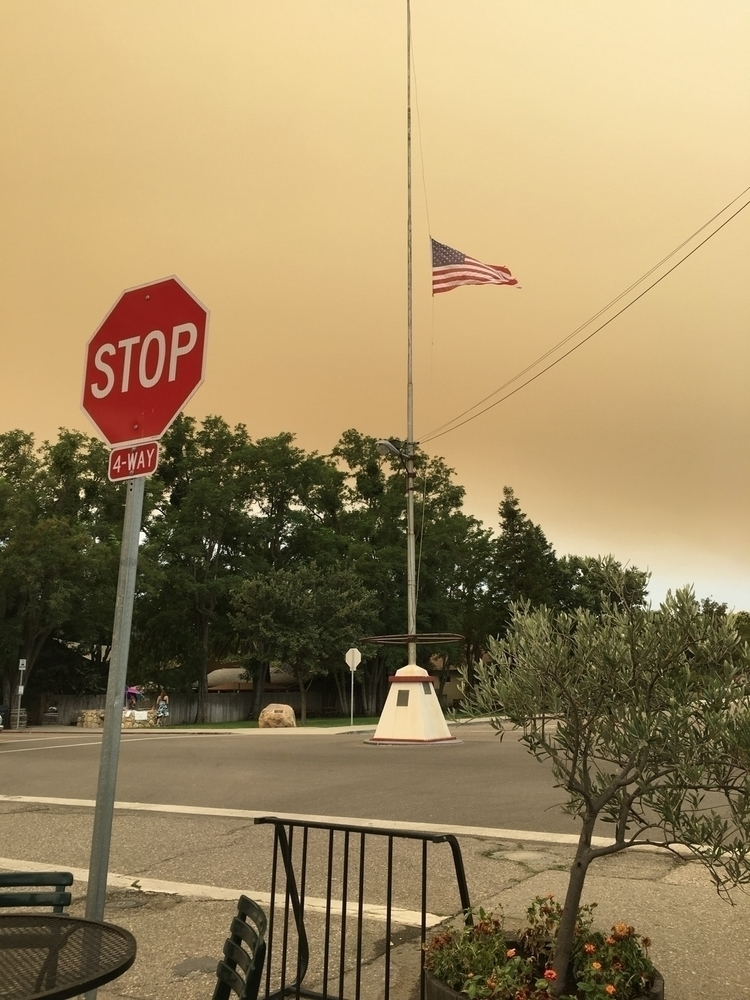 Skies filled falling ash major  - nicomartinez | ello