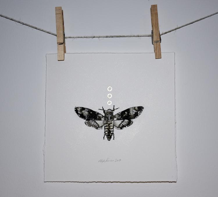 Finished Head Hawk Moth / Ink P - alexakarabin | ello