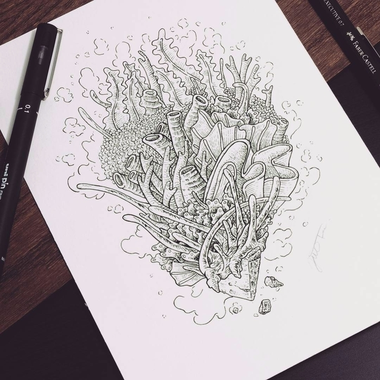 Corals - illustration, drawing, corals - jferreirastudio | ello