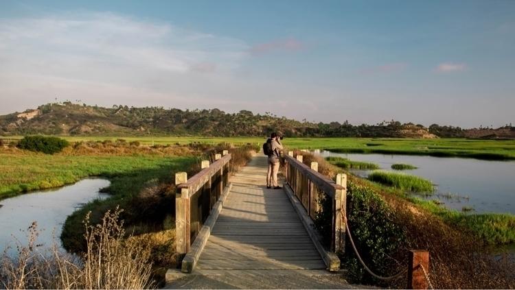 7.17.17 — San Elijo Lagoon, Enc - musicbymire | ello