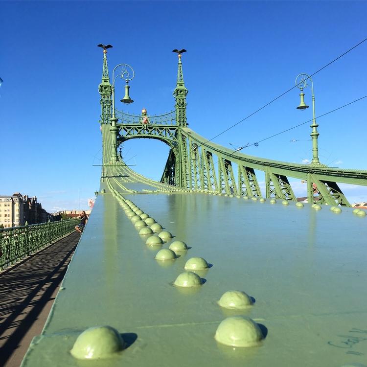 Liberty bridge Budapest Donau.  - stigergutt | ello