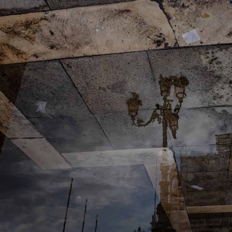 Anomaly - wet ground reflection - jemhayward | ello