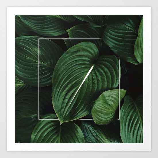 Tropical Leaves / Digital Art P - lostanaw | ello