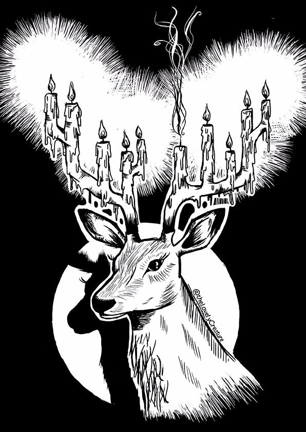 deer caught headlights - deerillustration - thelovelycreature | ello