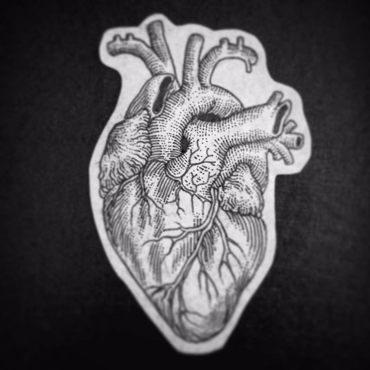 Levocardia luctu - cor, cœur, coeur - leonardofrey | ello