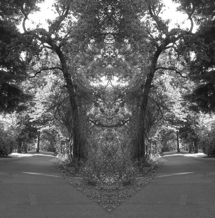 lane.totem.mirrored..august ,@h - zygzwurx | ello