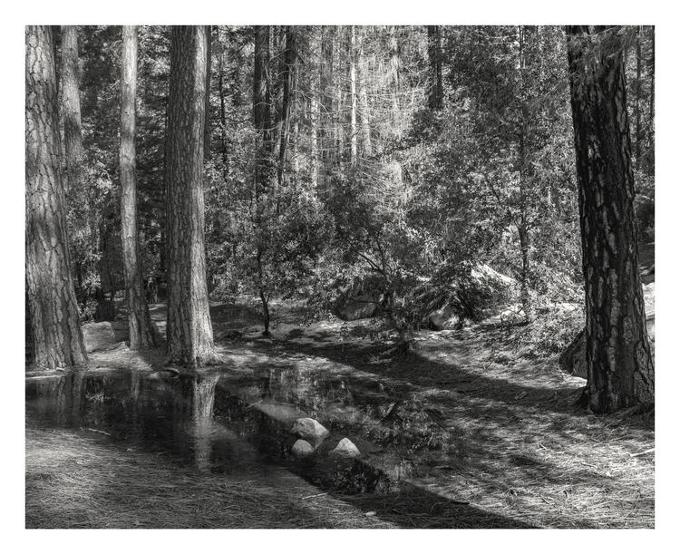 Yosemite Valley, CA - guillermoalvarez | ello