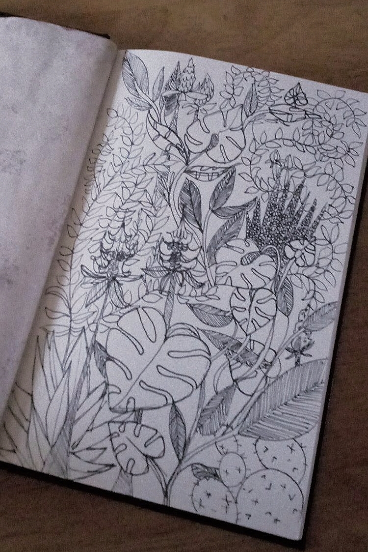 Plants - sketchbook, ink, black - meatballvizzy | ello