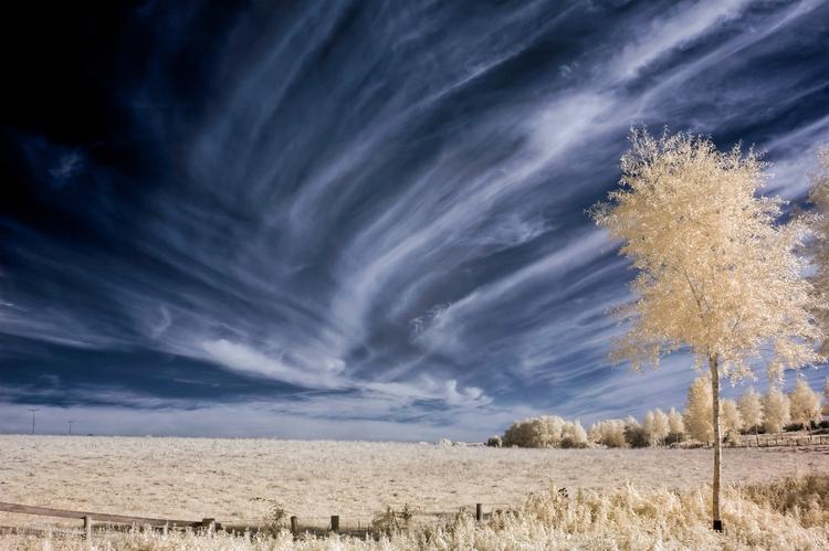 IR Cloudscape False colour imag - toni_ertl | ello