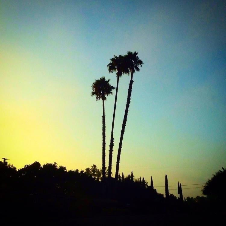 morning light rises horizon cel - alexgzarate | ello