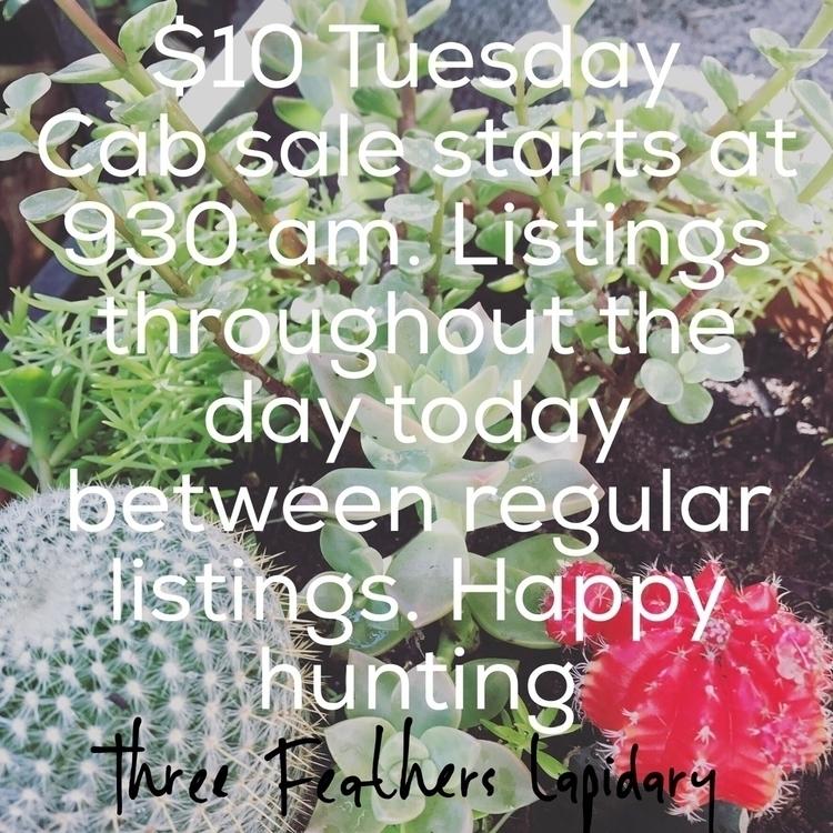 $10 Tuesday begins today 9:30 L - shannon_noelke_metal_arts | ello