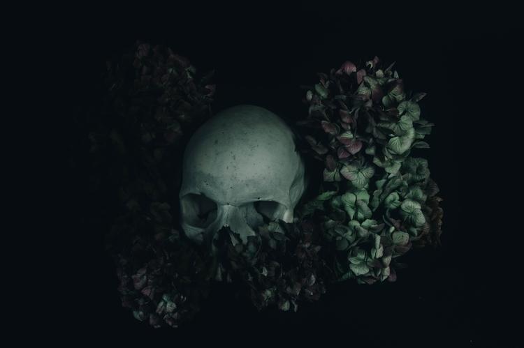 Faded Head@cyrilcaine Light dar - cyrilcaine | ello