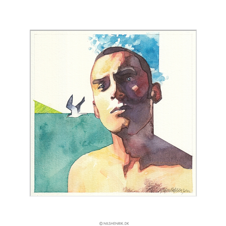 Wondering Seagull. Watercolour - nilshenrikdk | ello