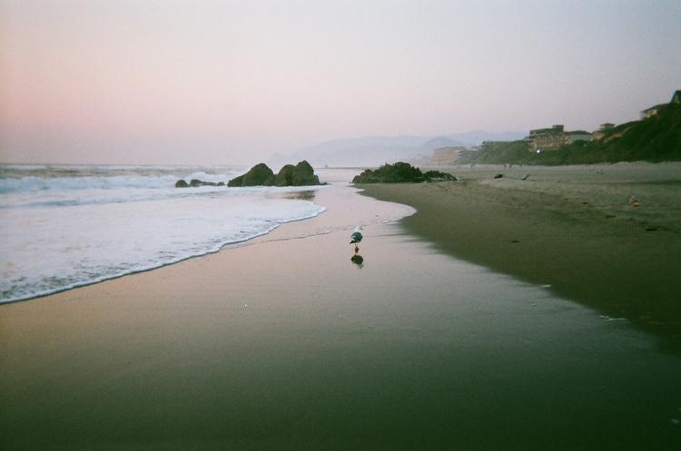 oregon coast twilight. august 2 - unhannahm | ello