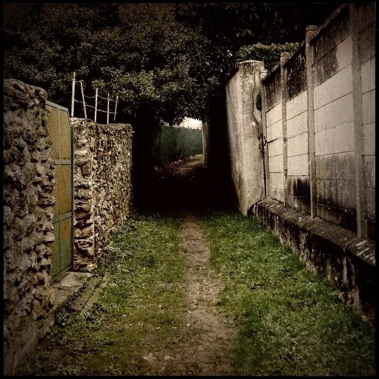 Simon walk countryside - 29. - danhayon | ello