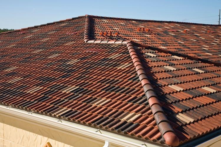 Roofing company offering weed c - iamcatherinelee   ello