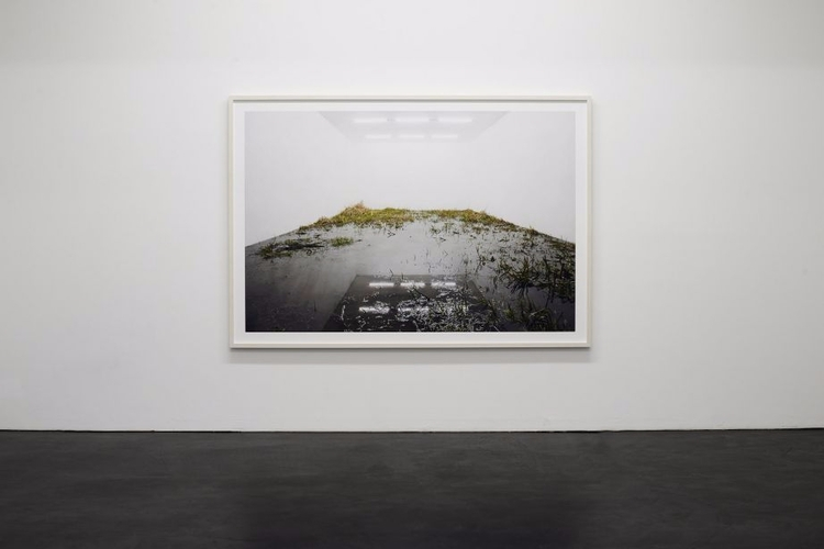 Fabian Knecht, Isolation exhibi - anaispaws | ello