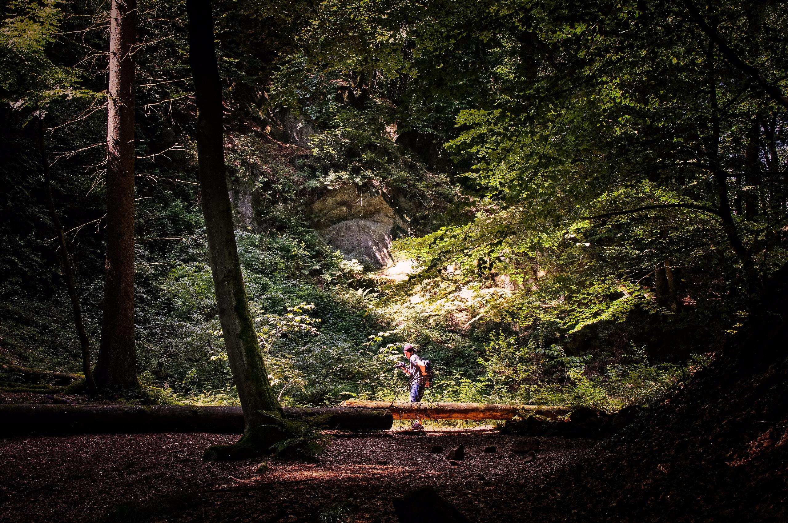 woods son Externsteine, Horn-Ba - klausheeskens | ello