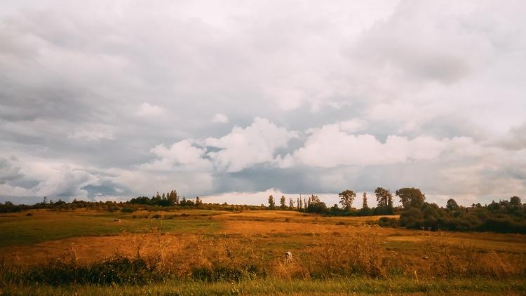 field, horizon, sky, nature, lithuania - beheroght | ello