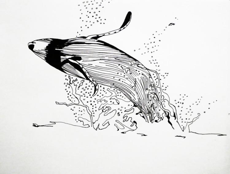whale - electricsky | ello