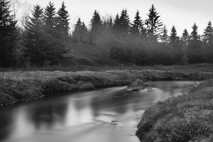 Dolly Sods Wilderness, WV. 30s  - theturrible | ello