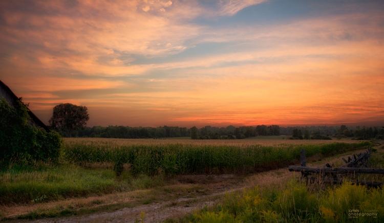 Late Summer Sunsets - sunset, ontario - freedomengine | ello