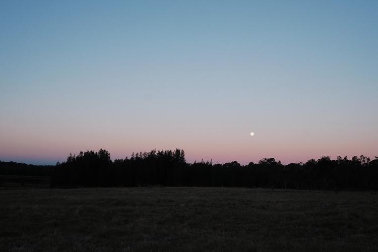 Moonrise - moonrise, lunas, themoon - humanator | ello