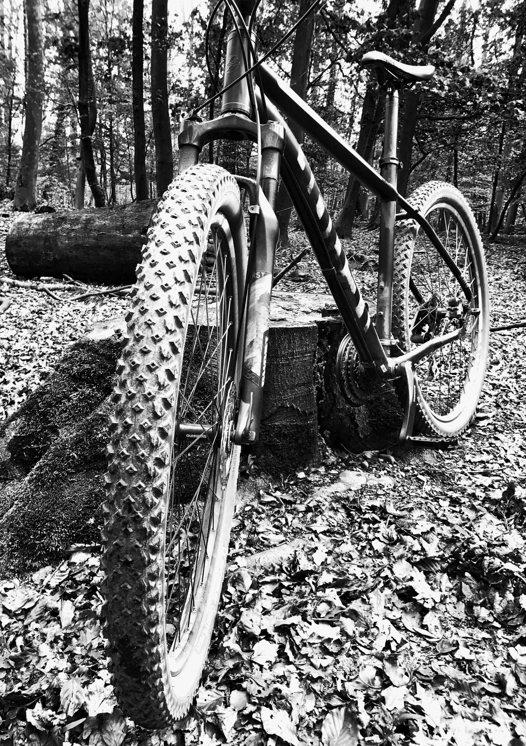 Today nice weather ride bike - blackandwhitephotography - borisholtz | ello