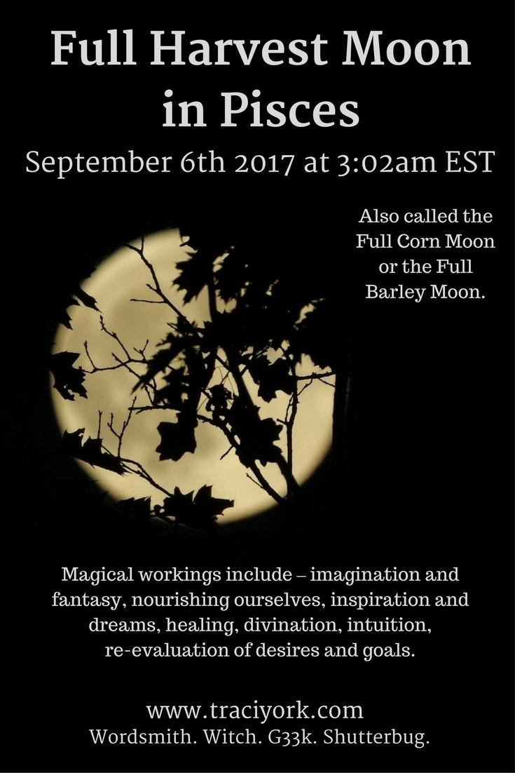 Witchy Wednesday post Full Harv - traciyork | ello