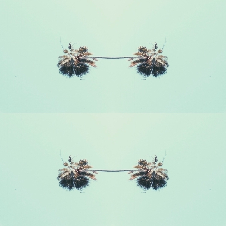 Palm tree earrings concept - design - spacesbeats | ello