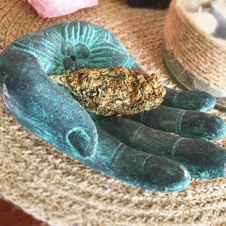 gift gods.  - thedailycloud, medicalmarijuana - thedailycloud | ello
