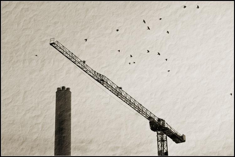 gedankenflug - monochrome, photography - melankomikerin | ello