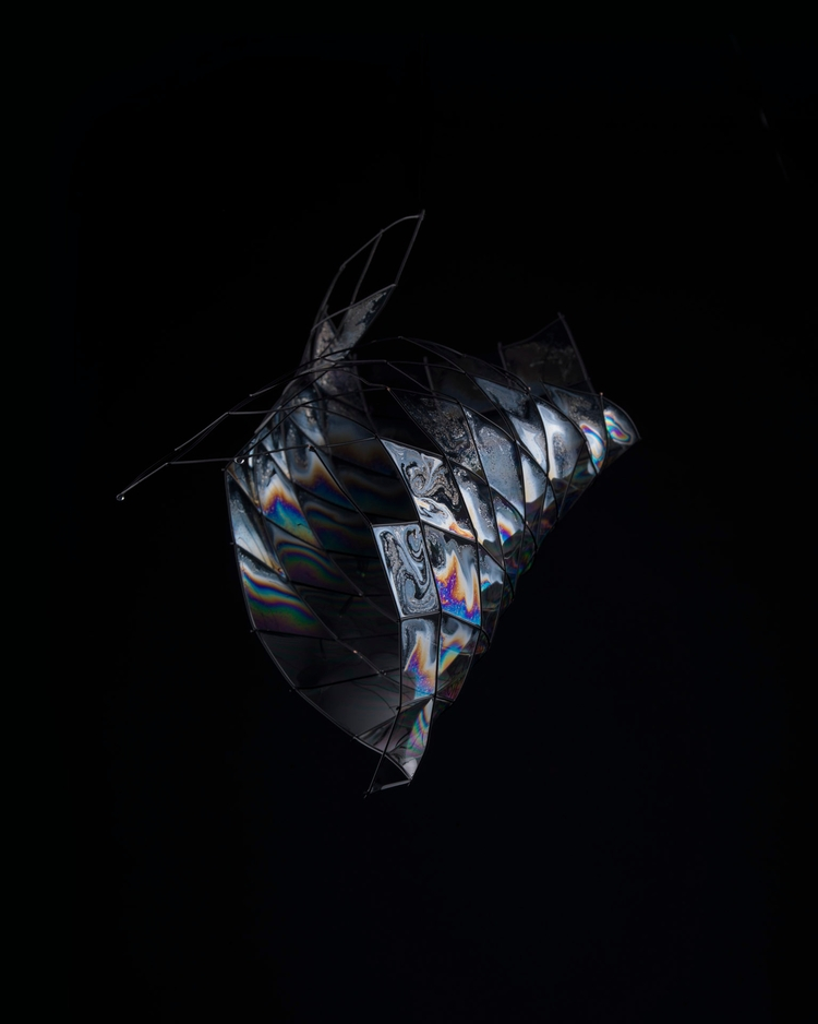 Phenomena - sculptures void - art - fess | ello
