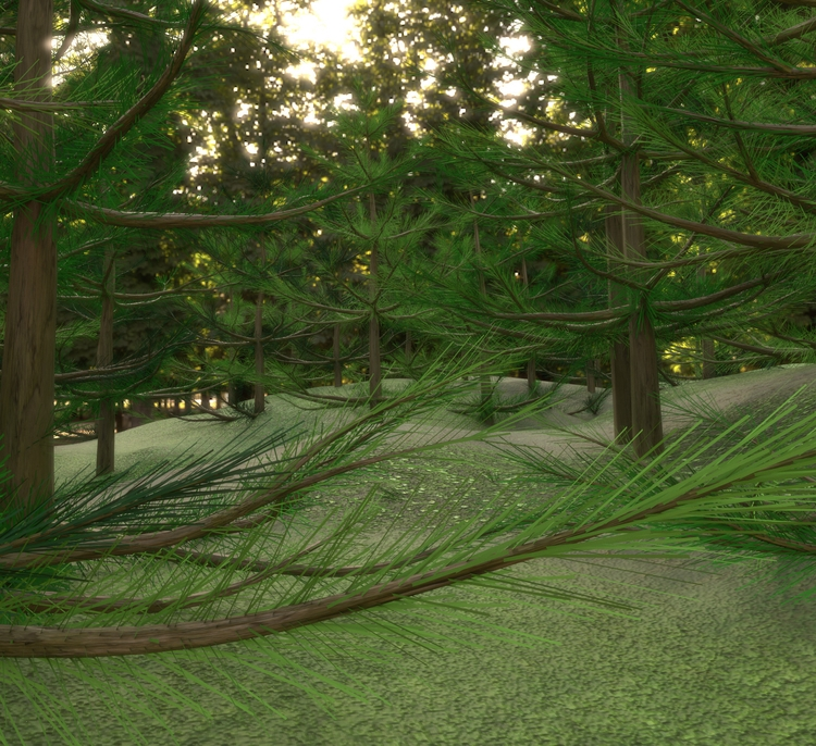Firs - render, blender, cycles, nature - solutuminvictus | ello