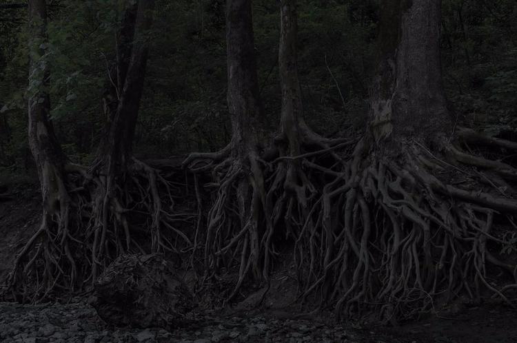 Darkness Light - photo, photography - valosalo | ello
