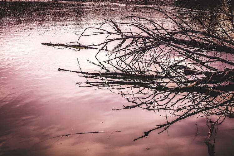 Serene Reflections Partially-su - mattgharvey | ello