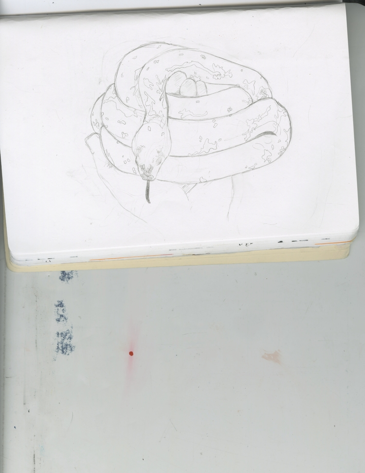 sketch 2 - sarahmcmillan | ello