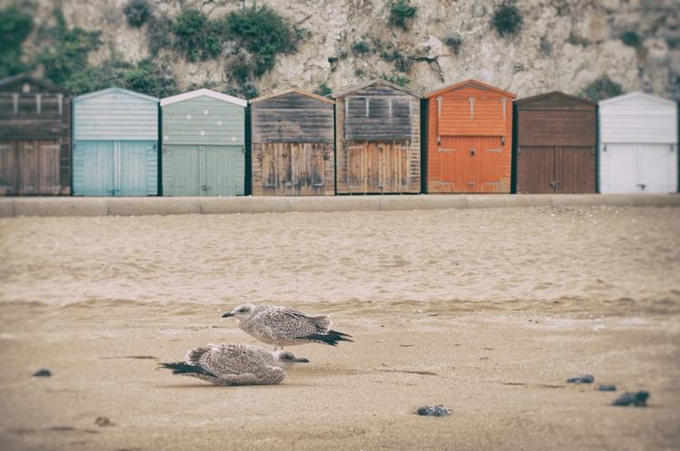 High Noon Shot edited - beach, uk - cm1ele | ello
