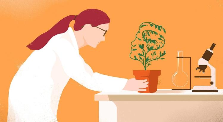 PLANT MEMORY show people plant - cvijeta | ello