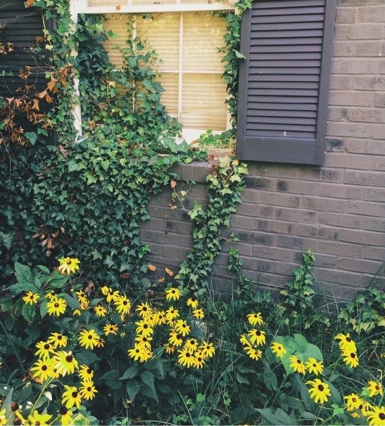Home feet - home - jadeloring | ello