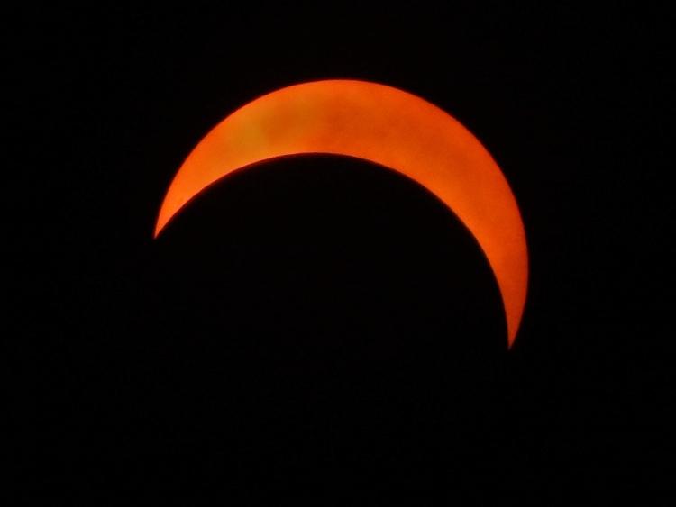 Solar Eclipse 2017 - tucucciolo | ello