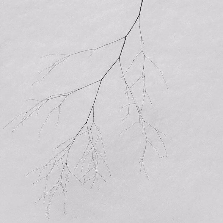 find beauty mundane unexpected  - minimalismlife | ello