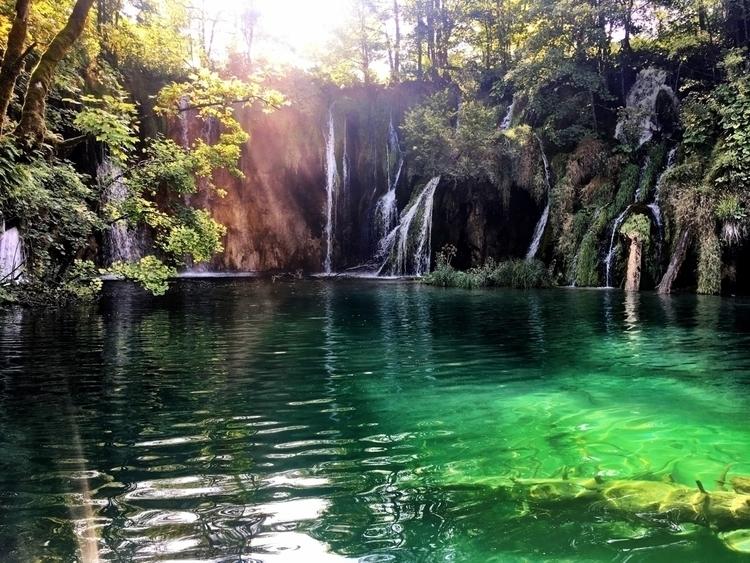 swimming allowed - photography, nature - jordanregehr   ello