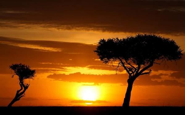 African Sermon Safaris Kenyan s - sermonsafaris | ello