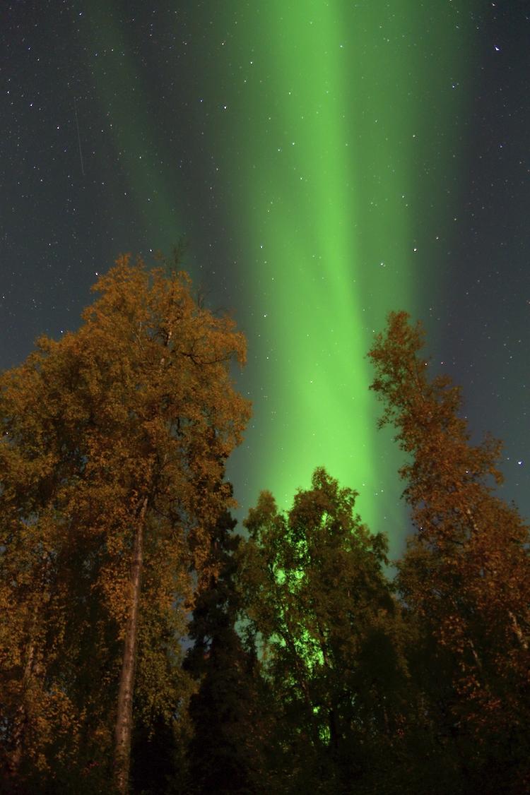 Nice view night Fairbanks . Moo - lwpetersen | ello